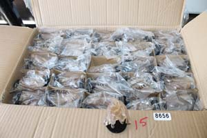 smalls/8656.JPG